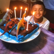 our delicious homemade chocolate cake with lots of toy dinosaurs